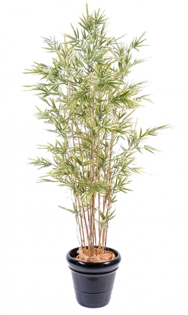Arbre artificiel importateur de plantes arbres et for Plante haute artificielle
