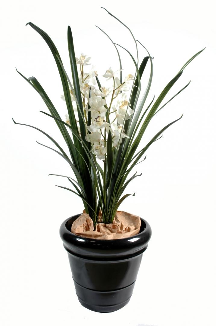 Plantes artificielles 4