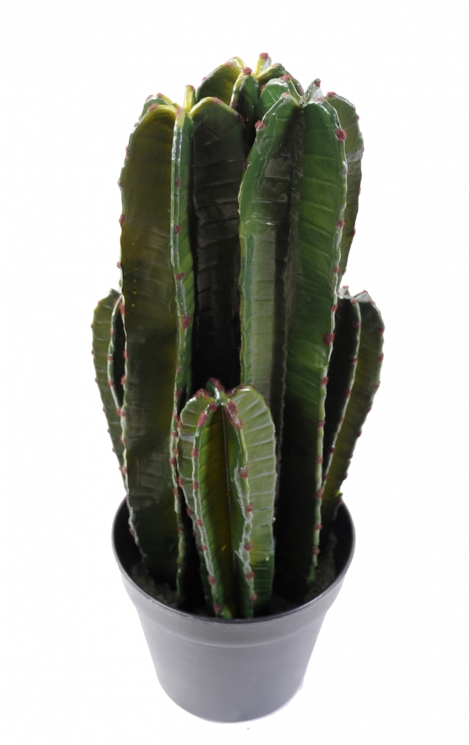 Fabricant de plantes artificielles 1