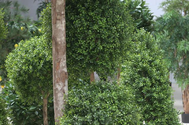 Vert Espace - Bandeau 4